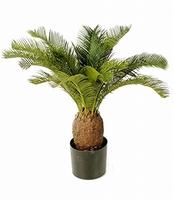 Kunstplant Cycas 65 cm