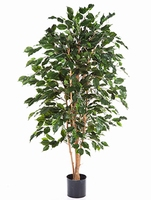 Kunstplant Ficus exotica 150 cm