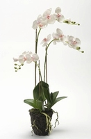 Kunstplant Phalaenopsis with moss pink soiled L