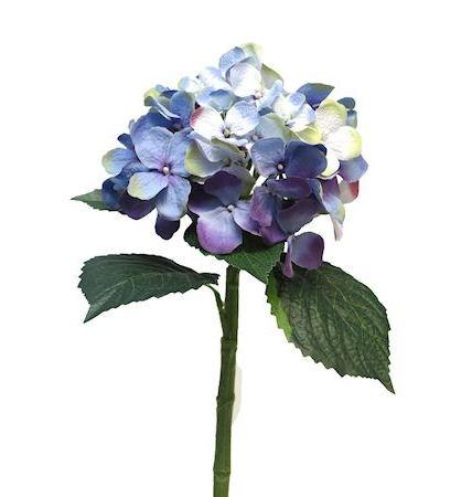 Bloem Madelina lila