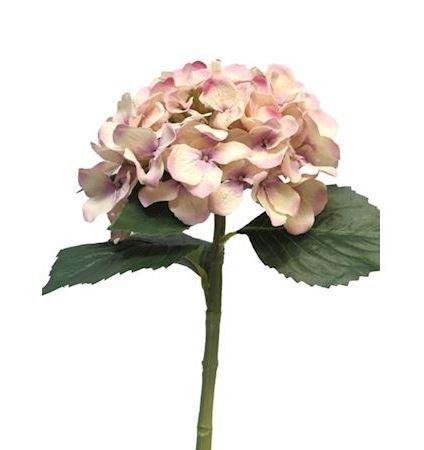 Bloem Madelina roze