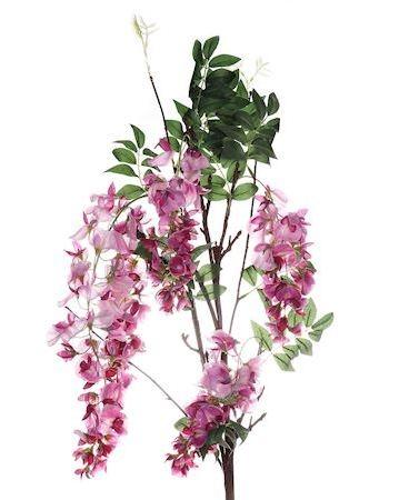 Bloem Vaiana roze