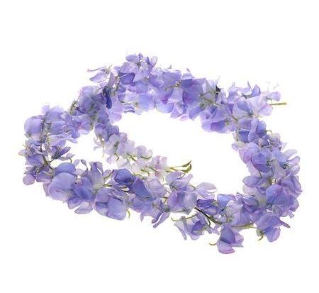 Bloemslinger Guirlande lila