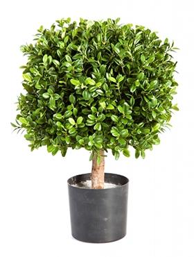 Kunstplant Buxus vierkant 45 cm op stam