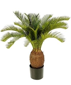 Kunstplant Cycas 70 cm