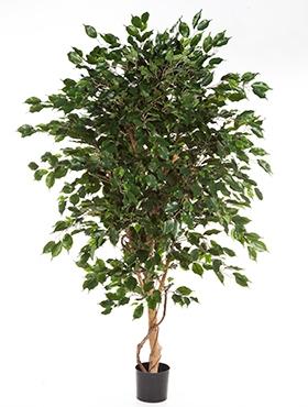 Kunstplant Ficus exotica de luxe 180 cm