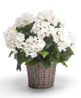 Kunstplant Hortensia wit in mand