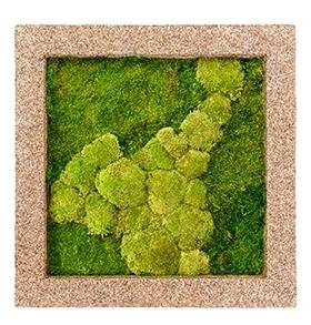 Mos schilderij Naturescast 50% bol en 50% platmos 70 cm