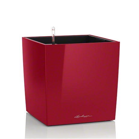 Plantenbak Lechuza Cube 30 diverse kleuren All-in-one set