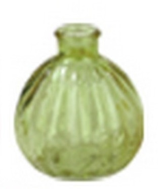 Vaasje Benin groen