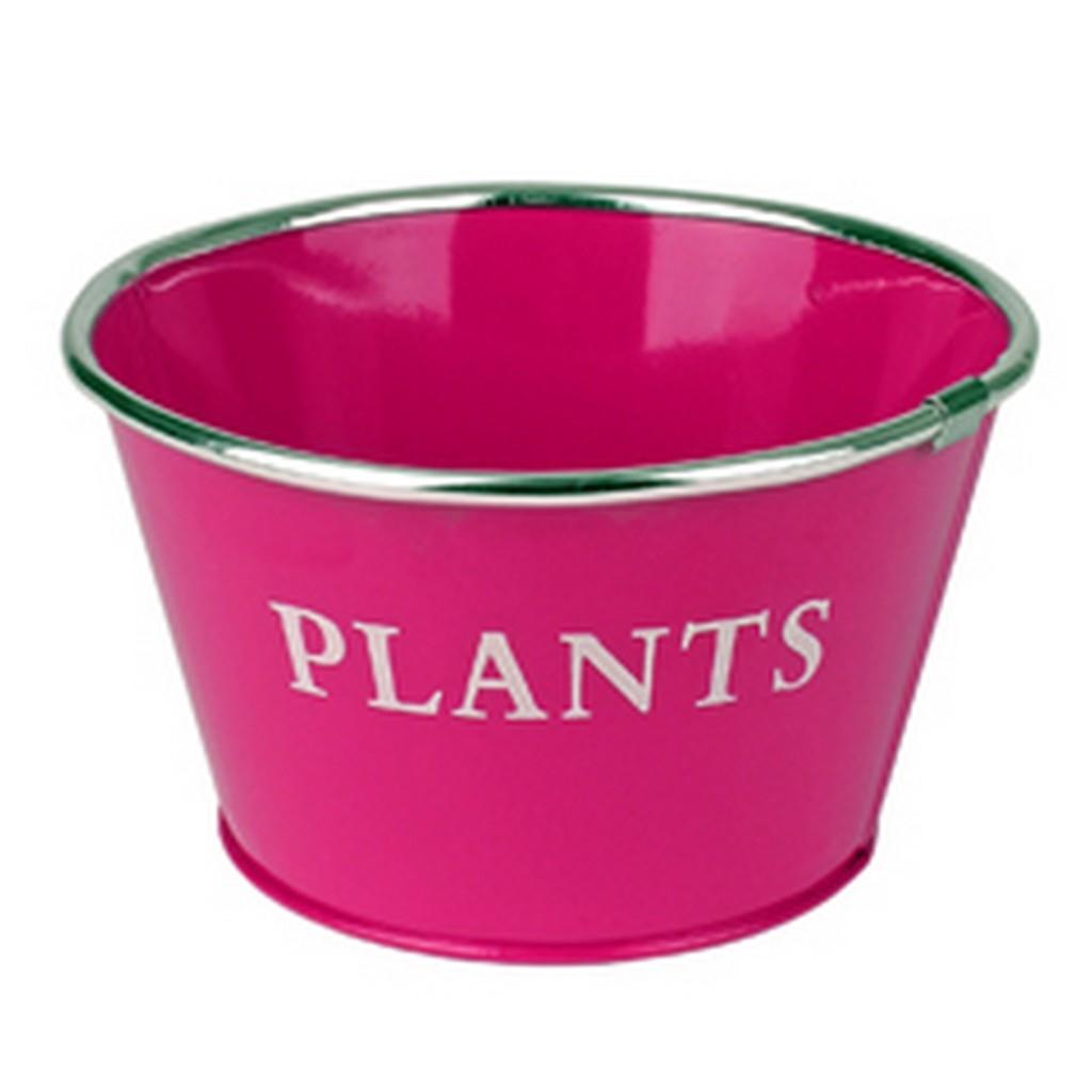 Zinken schaal gekleurd plants
